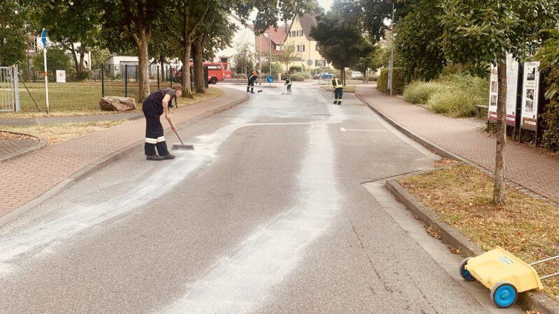 Straße reinigen